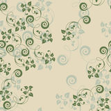 Ivy wild. Ornament plant stems of ivy pattern repeating Stock Image