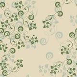 Ivy wild Stock Image