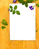 Ivy on wood table Royalty Free Stock Photography
