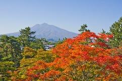 Iwaki山在日本 免版税库存照片