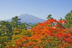 Iwaki-Berg in Japan Lizenzfreie Stockfotos