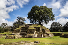 Iximche ruins. In Guatemala, rests of the Maya's tribe Royalty Free Stock Photography