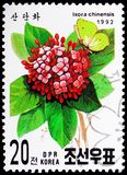 Ixora chinensis, International Stamp exhibition Geneva - 92 serie, circa 1992. MOSCOW, RUSSIA - MAY 25, 2019: Postage stamp printed in Korea shows Ixora stock photography