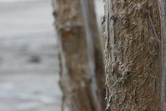 Izmerayuschy filar solankowi poziomy Zdjęcia Stock