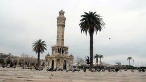 Izmir city,piegons fly and walking,  turkey stock footage