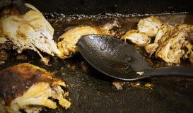 Izquierda sobre pollo Fotografía de archivo libre de regalías