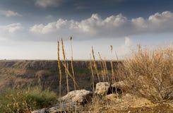Izrael Gamla rezerwat przyrody Obraz Royalty Free