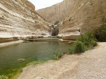 Izrael pustynia Fotografia Stock