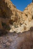 Izrael. Pustynny Negew zdjęcie royalty free