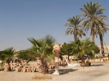 Izrael Sprzedaż garncarstwo w Judaistycznej pustyni Zdjęcia Royalty Free