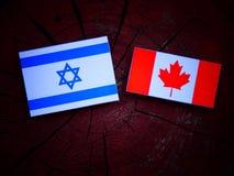 Izraelita flaga z kanadyjczyk flaga na drzewnym fiszorku odizolowywającym obraz royalty free