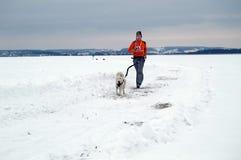Járkov - enero 14: El competir con de perro de trineo Funcionamientos del deportista con el perro encendido Fotografía de archivo libre de regalías