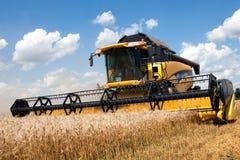 JÁRKOV, UCRANIA - 12 DE JULIO DE 2011: Cosecha del campo de trigo en Járkov Oblast en la Ucrania Foto de archivo