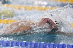 Jérémy Stravius Coupe Du Monde Pływanie àChartres Fotografia Royalty Free
