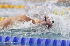 Jérémy Stravius Coupe Du Monde Pływanie àChartres Zdjęcia Stock