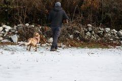 Jägare med geväret och hans jaktsetterhund i skogen royaltyfria bilder