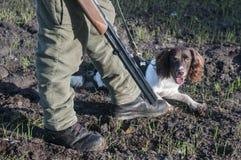 Jägare och jakthund på fältet Arkivfoto