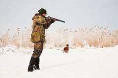 Jäger, der die Jagd anstrebt. Jagdhundeaufwartung Lizenzfreies Stockbild