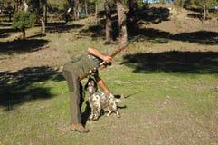 Jäger und seine Hunde Lizenzfreie Stockfotografie