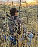 Jäger, welche nach Rotwild mit Binokeln sucht stockfotos
