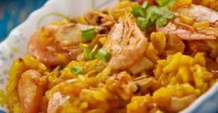 Jäkel Fried Rice Royaltyfri Bild