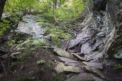 Jäkelbana som fotvandrar slingan i de Catskill bergen arkivfoton