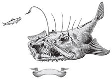 jäkelfiskvektor Fotografering för Bildbyråer