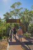 Jäkelhalsingången på Iguazu parkerar i Argentina Royaltyfri Fotografi