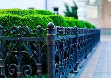 Järn förfalskat staket, smidesjärnprydnader, horisontalfoto, naturligt ljus, utrymme för kopia royaltyfri foto