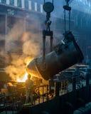 Järn- och stålväxtseminarium Arkivfoto