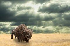Järnbuffel som göras av järnrest som går i torr prärie Öppet vanligt landskap med den Amercian bisonen Regn som commming till grä arkivfoto