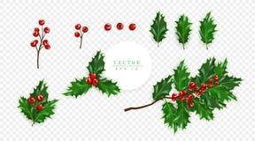 Järnekbäruppsättningen, symbol av jul som isoleras på genomskinlig bakgrund, kan användas för garnering av hälsningkort vektor illustrationer