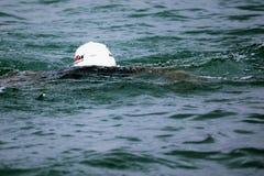 Järnman i vattnet fotografering för bildbyråer