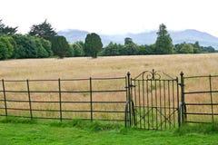Järnport och staket, Muckross lantgård, Irland royaltyfri foto
