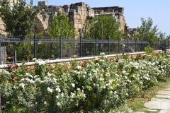 Järnstaket med härliga blommor Arkivfoto