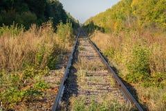 järnväg övergivna gammala stänger royaltyfri bild
