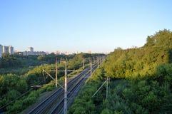 Järnväg bland träd i morgonen Arkivfoto