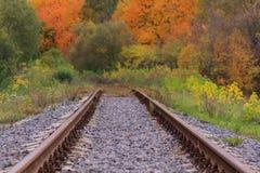 Järnväg- eller spårvägspåret i en härlig höst parkerar dimma fuktighet ljusa varma höstfärger royaltyfri bild