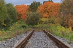 Järnväg- eller spårvägspåret i en härlig höst parkerar dimma fuktighet ljusa varma höstfärger fotografering för bildbyråer