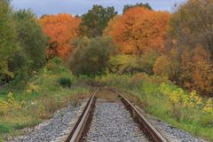 Järnväg- eller spårvägspåret i en härlig höst parkerar dimma fuktighet ljusa varma höstfärger royaltyfri fotografi