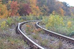 Järnväg- eller spårvägspåret i en härlig höst parkerar dimma fuktighet ljusa varma höstfärger arkivbild