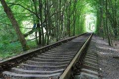 Järnväg i skog arkivbilder
