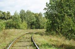 Järnväg i skogen royaltyfria bilder