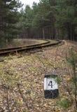 Järnväg i skogen Arkivbild