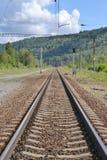 Järnväg i skogområdet Arkivbild