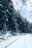 Järnväg i snowskog Arkivfoton