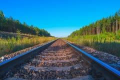 Järnväg i sommarafton Arkivfoto