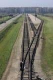 Birkenau järnväg Royaltyfria Foton