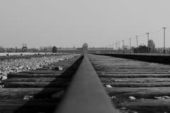 Birkenau järnväg Arkivbild