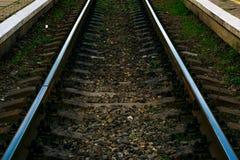 Järnväg linje Royaltyfri Bild